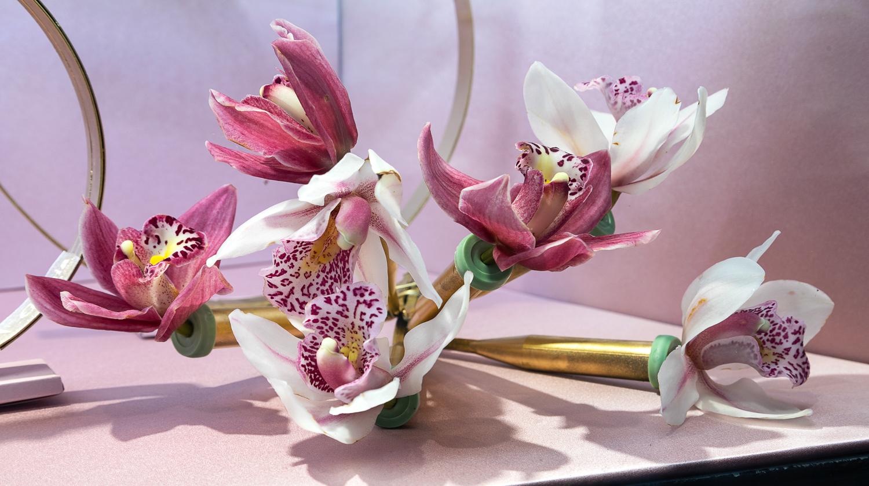 Detalle de orquídeas